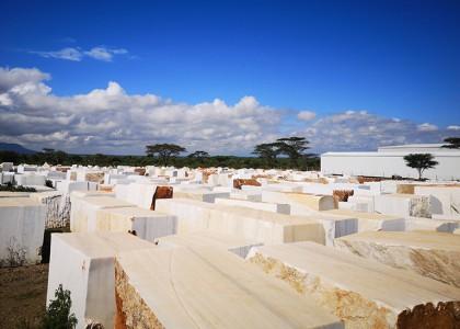 非洲白色大理石荒料